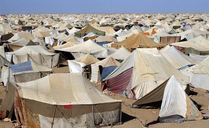 La Generalitat seguirá mediando ante el Frente Polisario para liberar a las saharauis retenidas en Tinduf