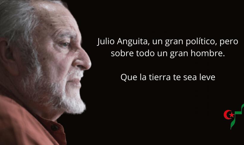 Julio Anguita, un gran político, pero sobre todo un gran hombre – CEAS-Sahara