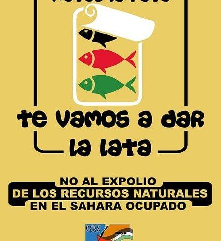 ¡CEAS DE NUEVO DANDO LA LATA! ¡OTRA EUROPA ES POSIBLE! – CEAS-Sahara