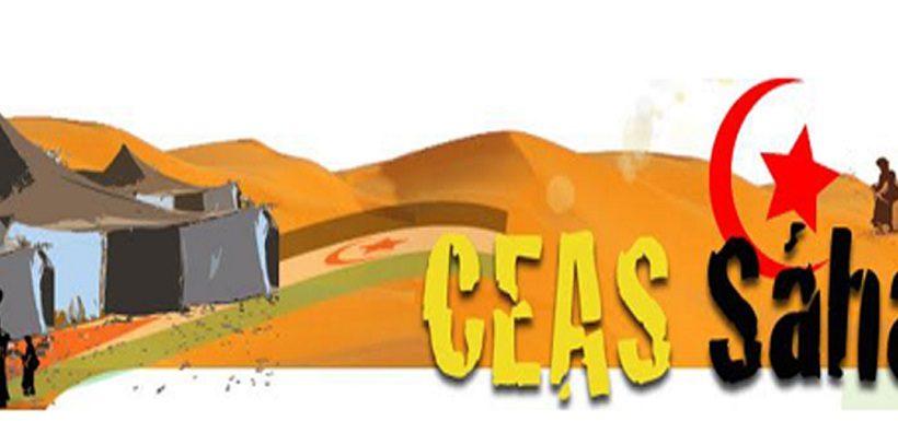 Resolución Asamblea Extraordinaria CEAS-Sahara [ON LINE]